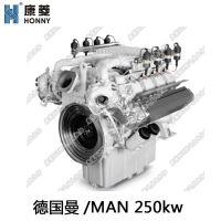 德国曼进口天然气发电机 E2848LE322 分布式能源发动力 250kw千瓦沼气发电机