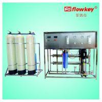 菲洛克水处理反渗透超纯水设备