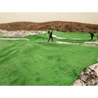 10米宽绿色盖土防尘网生产厂家联系:15131879580