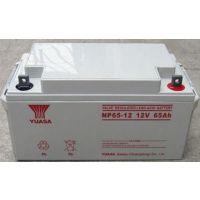 YUASA/汤浅铅酸蓄电池NP65-12全国联保