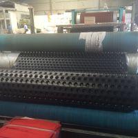 华龙30mm塑料排水板价格 HDPE排水板厂家