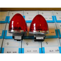 BLR-30R全电压式指示球灯 大形 日本丸安MARUYASU指示灯