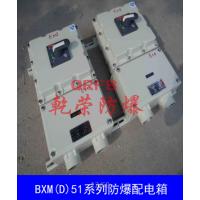 BXMD69-63A防爆配电箱 防爆照明配电箱订做 乐清防爆电控箱厂家