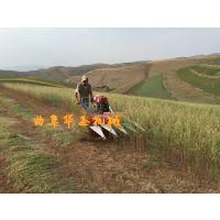 华圣工艺杂草收割机 家用牧草收割机 使用得当保养方法