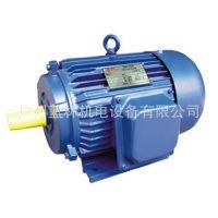 Y型三相异步电动机 y801-2 0.75kw 电动马达 广州南洋电机厂