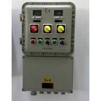 专业提供BXK58(DIP)系列粉尘防爆控制箱 粉尘防爆配电箱定制