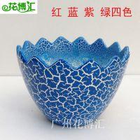 批发新款陶瓷花盆 创意迷你盆栽仙人球专用小花盆 迷你蛋壳花盆
