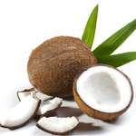 印度尼西亚原生椰子