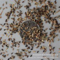 批量供进口将军菊苣种子 牧草种子 牧草种 品种齐全 质优价廉