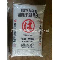 美国白鱼粉、玛路哈白鱼粉、雄鹰白鱼粉、海鲜白鱼粉