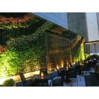 广州松涛植物墙 立体绿化墙 背景墙 仿真植物墙 室内外植物墙 设计师设计绿墙