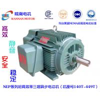 WNM/皖南电机 NEP系列超高效率三相异步电动机(机座号140T~449T)