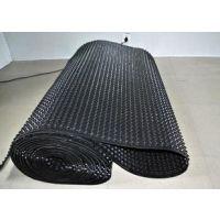 供应莆田建筑夹层塑料板,(屋顶绿化)德州滤水板