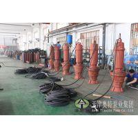 厂家直销大流量潜水轴流泵_排水排污专业轴流泵质量可靠