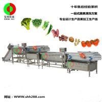 笙辉厂家订做大型蔬菜清洗生产线 涡流式洗菜机 全自动化臭氧杀菌蔬果清洗线