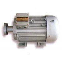 变频永磁同步电机|澳门永磁同步电机|永磁同步电机(查看)