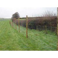 养殖围栏网批发,养殖围栏网,龙泰百川栅栏(在线咨询)