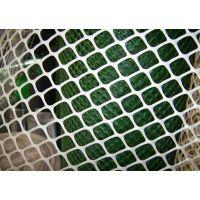 供应各种规格型号康之亿塑料平网养殖用网