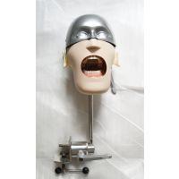 宏思特口腔教学模型HST-U6 II型简易头模