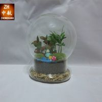 新款diy创意礼品玻璃花瓶微景观生态玻璃花瓶 苔藓多肉植物花瓶