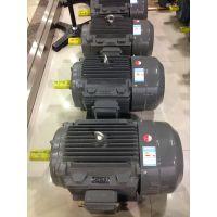 上海德东电机厂家供应YE2-160L-2 18.5KW 卧式三相电机2极高速