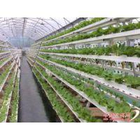 供应瓜果蔬菜种植专用管 方管无土栽培专用