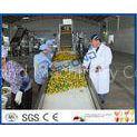 Complete Turn key Project Mango Fruit Juice Processing Line High Engery Saving