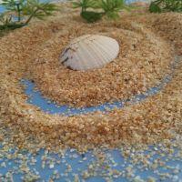 供应儿童专用20-40目幼儿园沙池用天然海沙