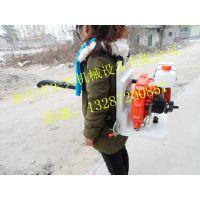 轻便吹雪机 小型手提式吹雪机 颗粒碎石吹风机价格
