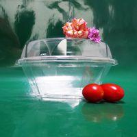 厂家直销 一次性透明塑料盒批发 水果塑料盒 透明塑料食品包装盒