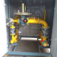 邓州市3500方双路燃气调压柜高精度就选衡水润丰厂家