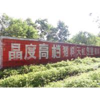 户外墙体广告、喷绘——广州市邑邑广告传媒有限公司