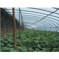 农业温室大棚环境全景视频监控系统