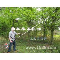出售高枝链锯 高枝油锯 斜挂式中枝锯 高枝绿篱机