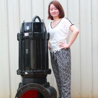 ZGTPYBY厂家直销自动搅匀排污泵 jywq型号自动搅匀排污泵