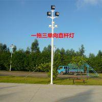 梅州市厂家销售LED路灯杆 小区热镀锌低碳灯杆 篮球场照明灯柱定做