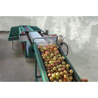 苹果重量分选机分选苹果大小的机器,按照重量分选苹果大小的选果机