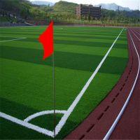 足球场人造草坪每平米报价/人造草坪专业施工方案设计