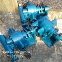 特价热销CLB-100沥青齿轮油泵 泊头CLB齿轮泵