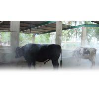 河南养殖场喷雾消毒杀菌设备装置工艺***精湛