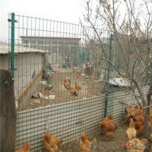 厂家供应养殖荷兰网 养鸡养羊铁丝围栏网 涂塑波浪网