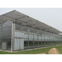承建玻璃、PC板连栋智能温室大棚——自动化生态展厅大棚,庭院温室