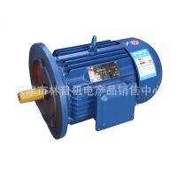 天津盛泰源电机有限公司|上海安力电机有限公司|YVP112M-4 4KW变频调速电机