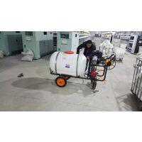 四轮手推式农用灭虫打药机 农业高压管喷洒多功能打药机