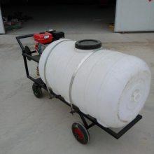 手推式汽油喷药机 农用高压打药机 汽油式喷药机
