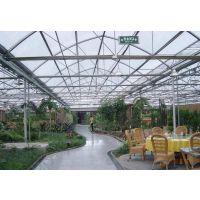 蔬菜大棚栽培西红柿 内有保温系统 盛和温室大棚