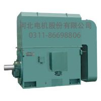 河北电机冠生牌2级200kw380vYKK系列中型高压三相异步电机(10KV)