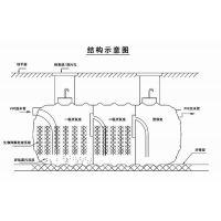 青冈县农村改造环保化粪池 1500L塑料化粪池制造