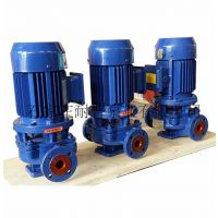 IRG型立式热水泵,耐普铸铁立式热水泵厂家