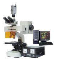 多功能专业荧光显微镜XYG-01SM平场目镜 显微镜数码电子可接电脑